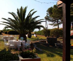 Hochzeitscatering auf Sardinien - unter Dattelpalmen speisen bei frischer Meeresbriese